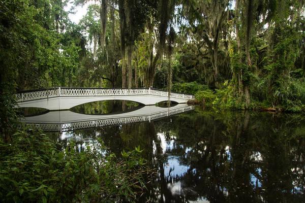 Photograph - Magnolia Plantation And Gardens by Doug McPherson