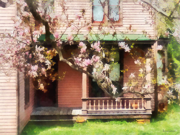 Photograph - Magnolias By Back Porch by Susan Savad
