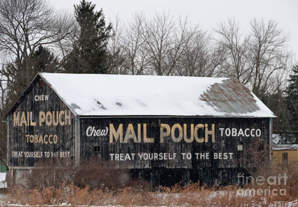 Wall Art - Photograph - Mail Pouch Tobacco Barn by David Arment