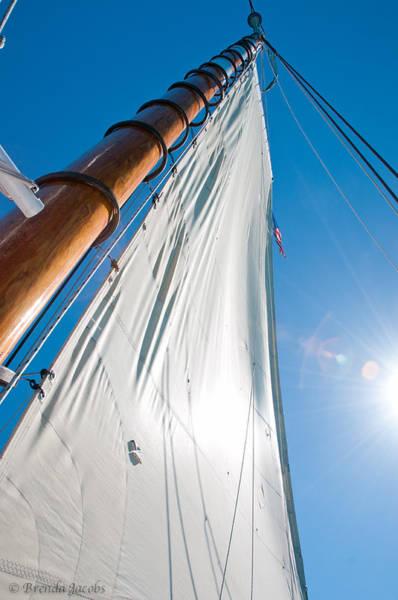 Photograph - Main Sail by Brenda Jacobs