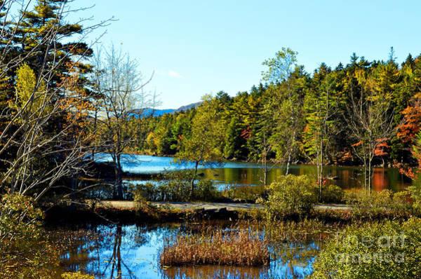 Harbor Scene Digital Art - Maine Acadia National Park by Eva Kaufman