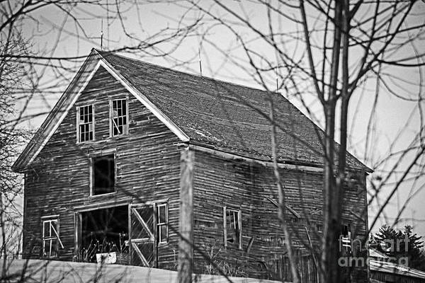 Maine Barn Art Print