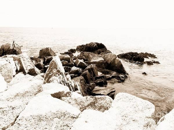 Racing Shell Photograph - Maine Coastline by Marcia Lee Jones