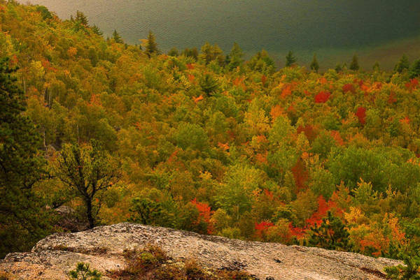 Wall Art - Photograph - Maine Fall Colors by Stephen  Vecchiotti