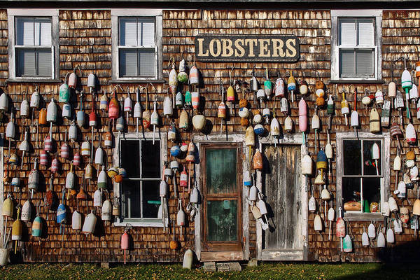 Lobster Photograph - Maine Life by Robert Fawcett