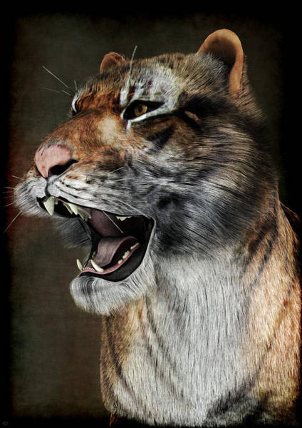 Painting - Majestic Beast by Maynard Ellis