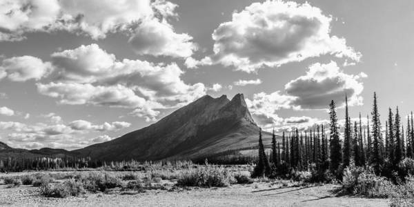 Wall Art - Photograph - Majestic Drive by Chad Dutson