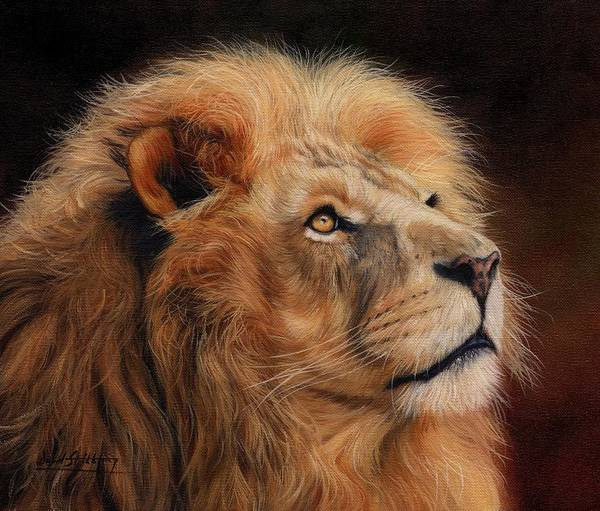 Big Cat Wall Art - Painting - Majestic Lion by David Stribbling