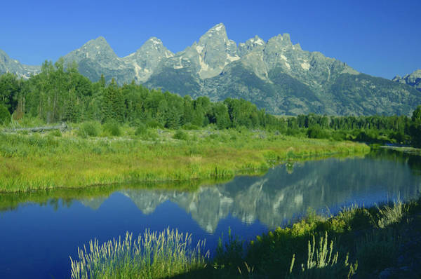 Photograph - Majestic Tetons I by Craig Ratcliffe