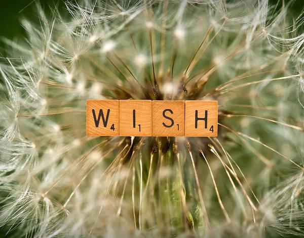 Photograph - Make A Wish by  Onyonet  Photo Studios