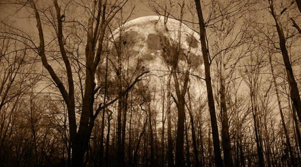 Super Moon Photograph - Make The Myths by Betsy Knapp