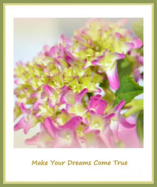 Photograph - Make Your Dreams Come True by Susanne Van Hulst
