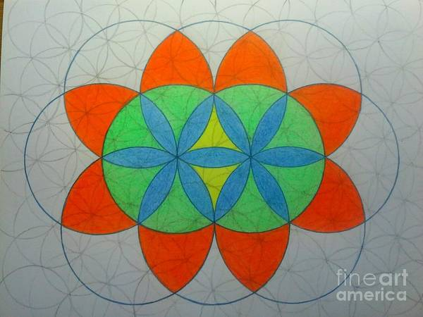 Sacred Geometry Drawing - Maker by Joel Loftus