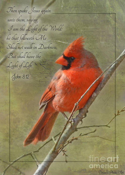 Wall Art - Photograph - Male Cardinal On Twigs With Bible Verse by Debbie Portwood