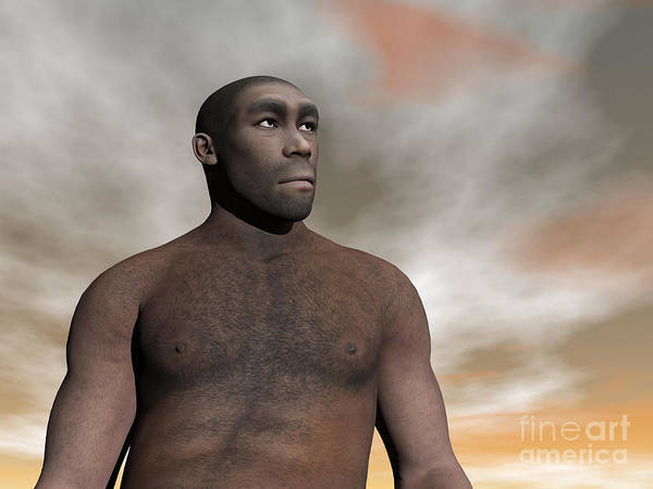 Humanity Digital Art - Male Homo Erectus, An Extinct Species by Elena Duvernay