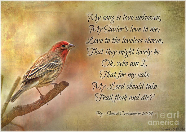 Wall Art - Photograph - Male House Finch With Hymn IIi by Debbie Portwood
