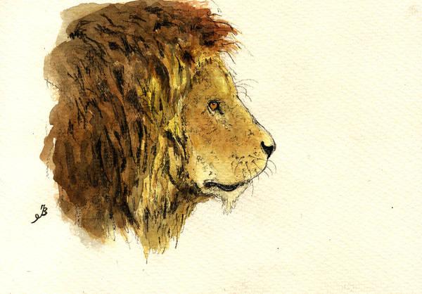 Head Painting - Male Lion Head by Juan  Bosco