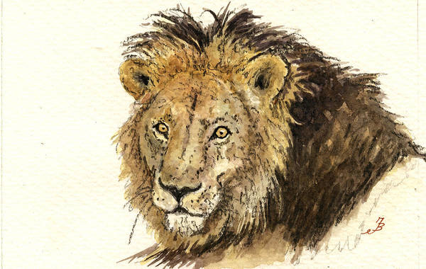 Study Painting - Male Lion by Juan  Bosco