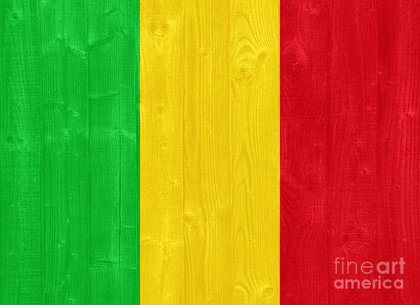 Wall Art - Photograph - Mali Flag by Luis Alvarenga