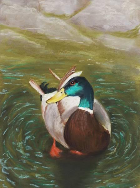Painting - Mallard by Anastasiya Malakhova