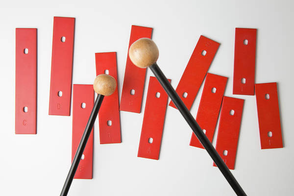 Messier Object Photograph - Mallets Preparing To Play Bars From A by Caspar Benson