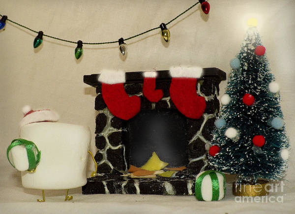 Photograph - Mallow Christmas by Heather Applegate