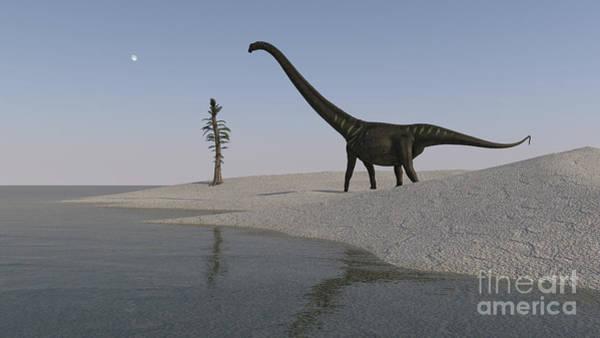 Digital Art - Mamenchisaurus Walking by Kostyantyn Ivanyshen