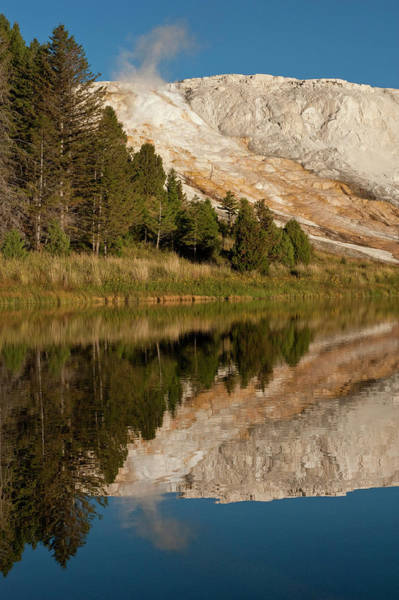 Geothermal Photograph - Mammoth Hot Springs, Reflected In Small by Howie Garber