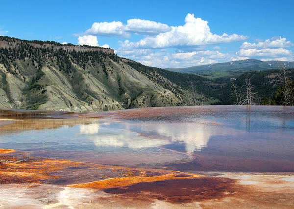Photograph - Mammoth Hot Springs Reflections by Jemmy Archer