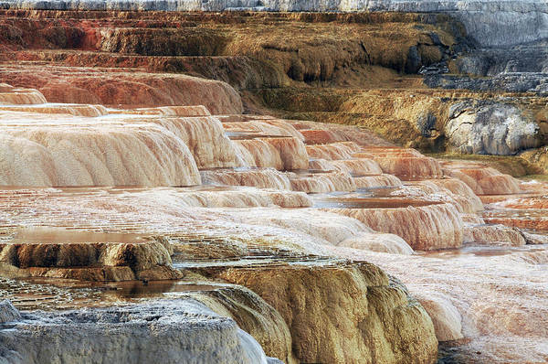 Deposits Wall Art - Photograph - Mammoth Hot Springs Terracaes by Michel Hersen