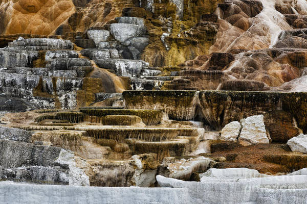 Photograph - Mammoth Hot Springs - Yellowstone by Belinda Greb