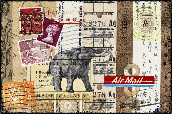 Correspondence Photograph - Mammoth Mail by Carol Leigh