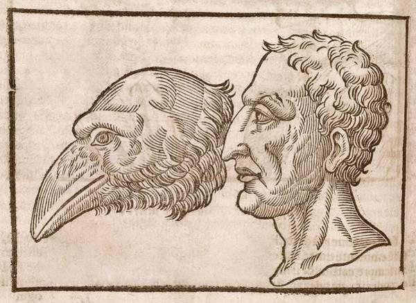 Traits Photograph - Man And Crow's Head by Middle Temple Library