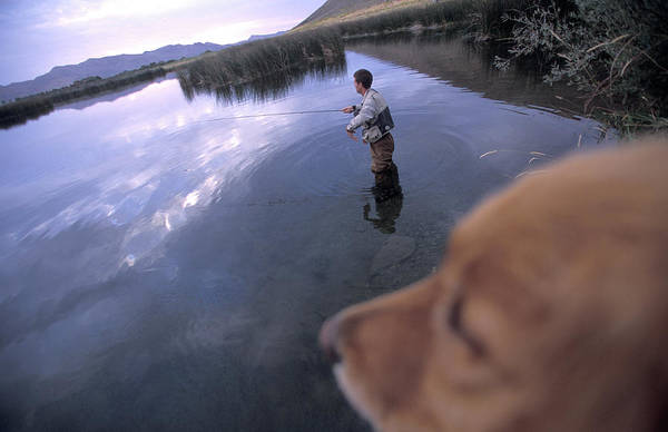 Fly Fishing Photograph - Man And Dog Fly Fishing On Silver by Corey Rich