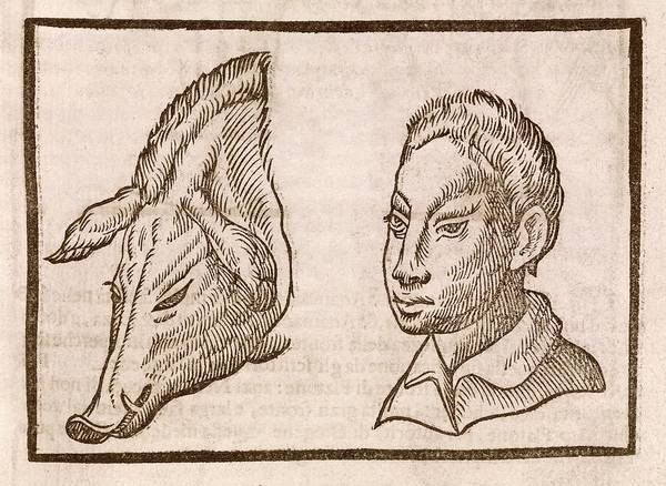 Traits Photograph - Man And Pig's Head by Middle Temple Library