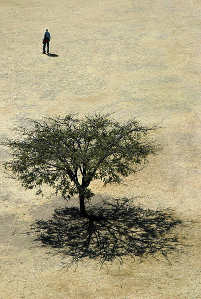 Photograph - Man And Tree. Monte Alban. Oaxaca Mexico by Rob Huntley