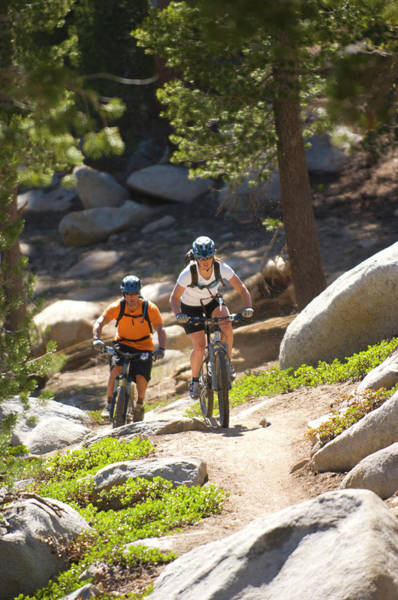 Wall Art - Photograph - Man And Woman Mountain Biking The Tahoe by Scott Markewitz