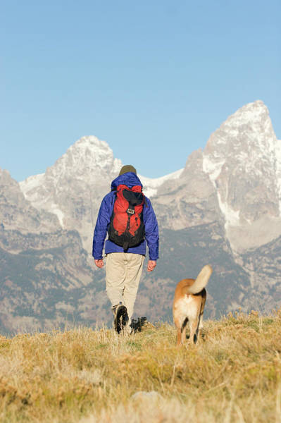 Wall Art - Photograph - Man Backpacking With Dog In Grand Teton by Justin Bailie