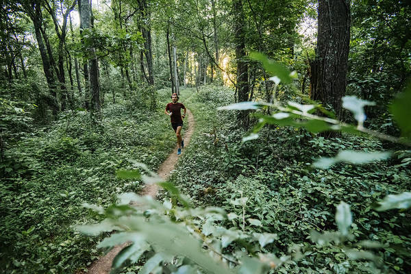 Man Jogging In Forest Along Mountain To Sea Trail, Asheville, North Carolina, Usa Art Print by Andy Wickstrom / Aurora Photos