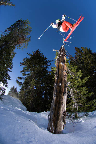 Ski Jumping Photograph - Man Jumping Over A Dead Tree by Scott Markewitz