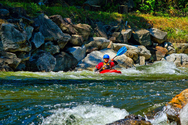 Kayaks Wall Art - Photograph - Man Kayaking In Rapid Water, Ontario by Panoramic Images