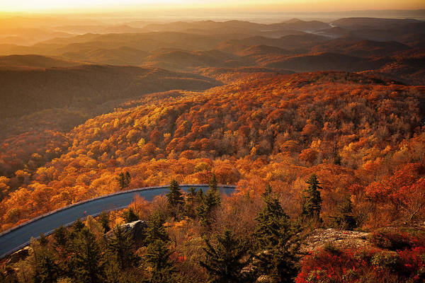 Wall Art - Photograph - Man On Road Bike On Blue Ridge Parkway by Tommy Penick