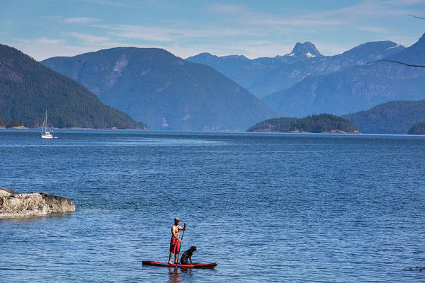 Standup Paddleboard Photograph - Man Paddleboarding In Desolation Sound by Michael Hanson