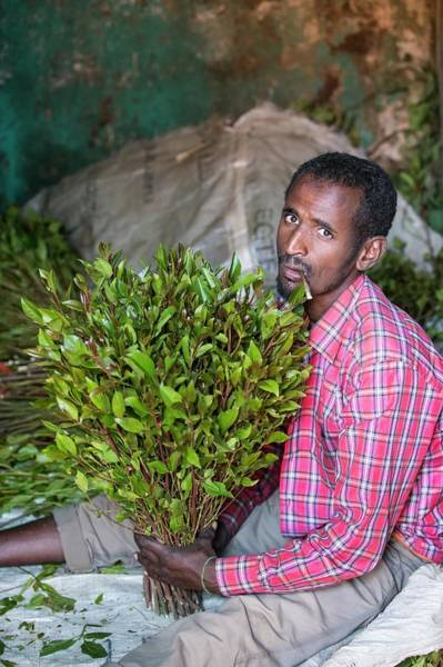Chewing Photograph - Man Selling Khat At A Market Near Harer by Peter J. Raymond