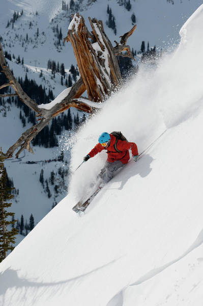 Wall Art - Photograph - Man Skiing Sunny Powder by Adam Clark