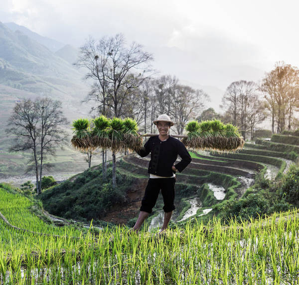 Shoulder Photograph - Man Stanging In Rice Paddy Carrying by Martin Puddy