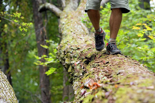 Ossipee Wall Art - Photograph - Man Walking Along A Log by Lisa Seaman