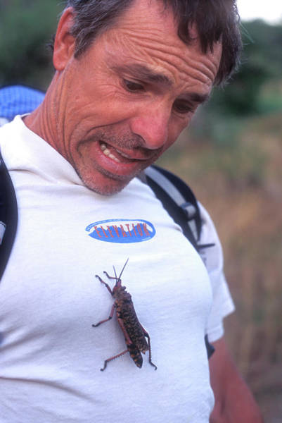 Bug Man Photograph - Man With Large Insect On Chest, South by Jimmy Chin