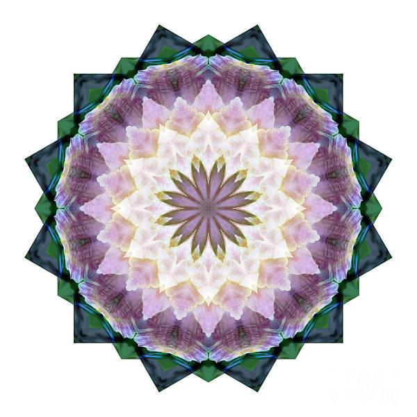 Digital Art - Mandala - Hagi Healing Layers by Kathi Shotwell