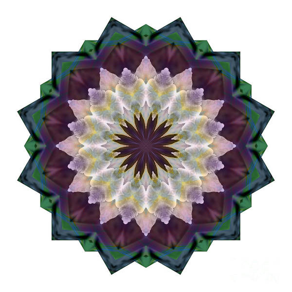 Digital Art - Mandala - Hagi Rich Reds by Kathi Shotwell